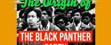 black panthers, black panther party, black panthers history