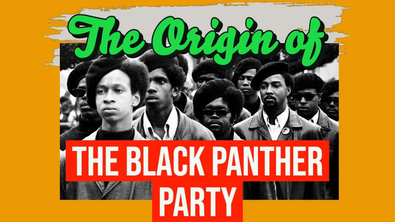 The Life & Death of the Black Panther Party